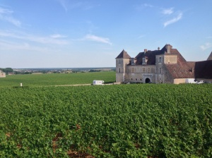 Vosne Romanée vineyards